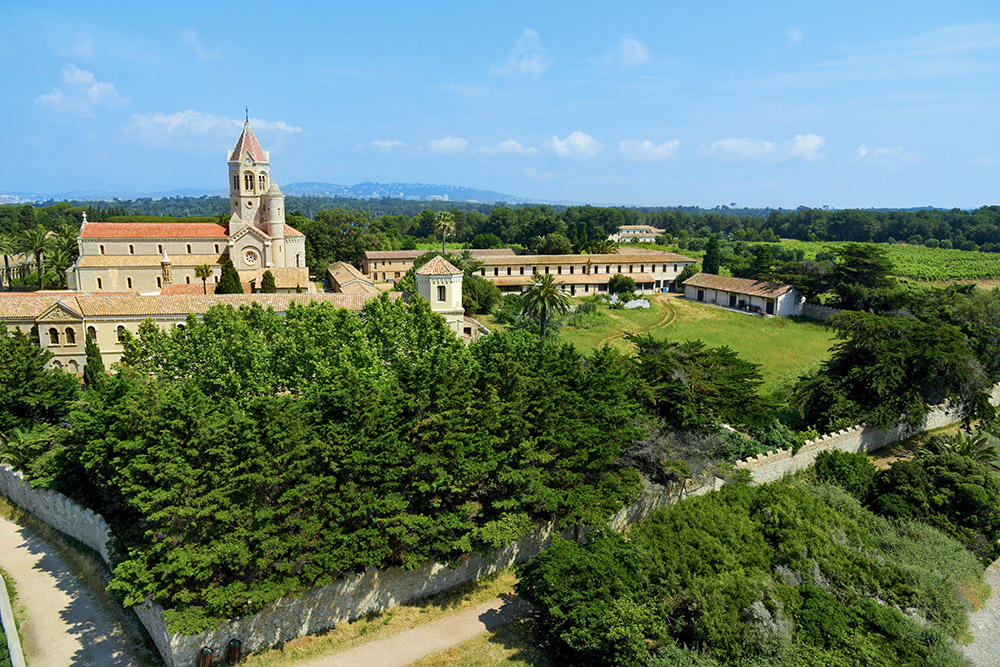 The Abbey of the Island of Saint-Honorat and its vineyards