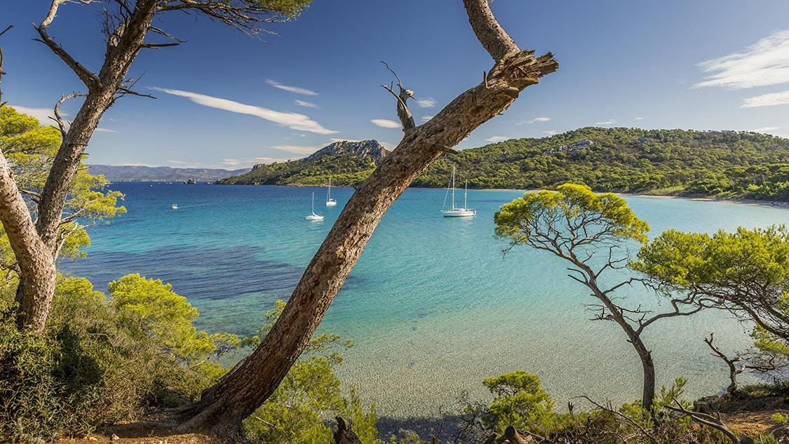 Beach on Porquerolles Island