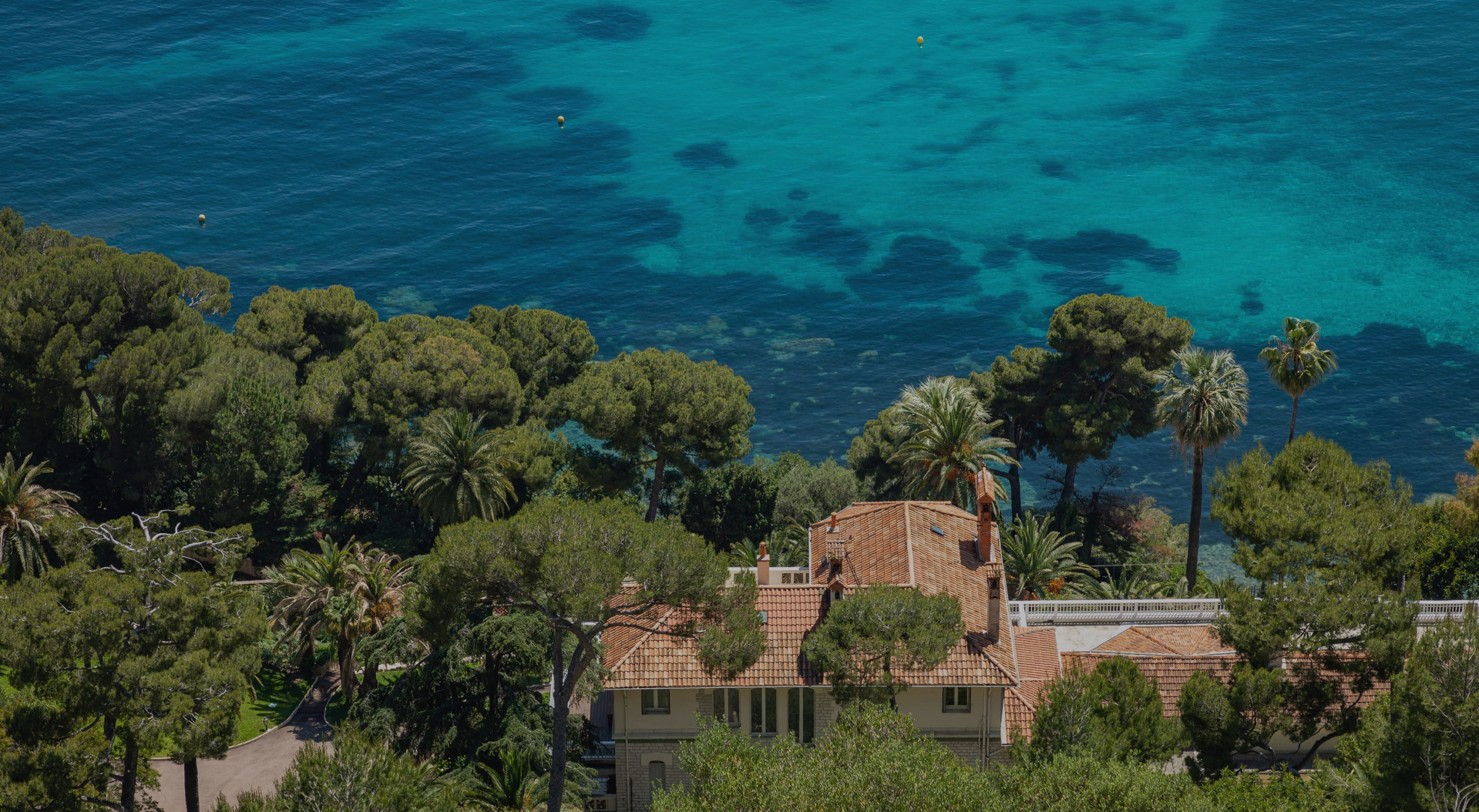 Turquoise sea and pine trees on the French Riviera, South of France