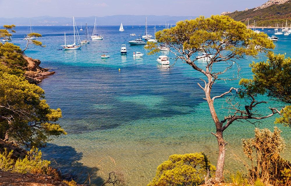 Landscape of the Island of Porquerolles