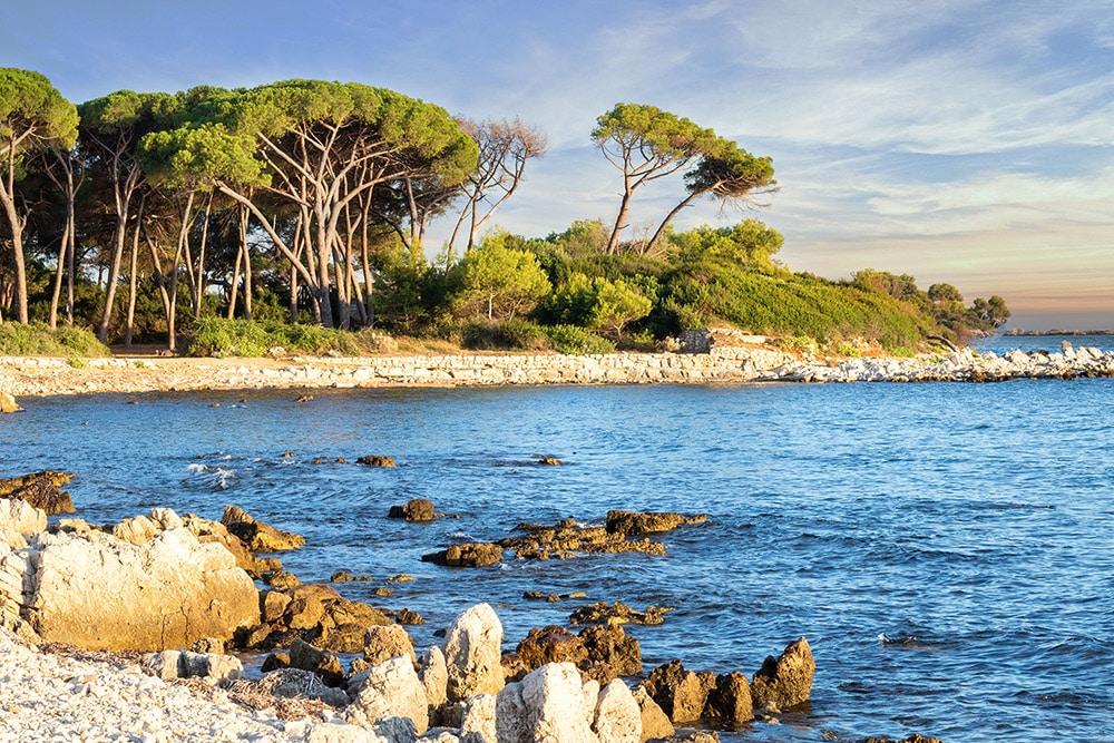 Landscape of the island of Sainte-Marguerite